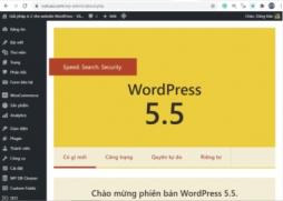 Cách tắt Lazy loading và wp-sitemap.xml trong WordPress 5.5