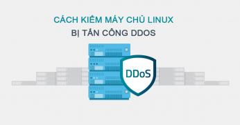 Cách kiểm tra máy chủ Linux bị tấn công DDoS