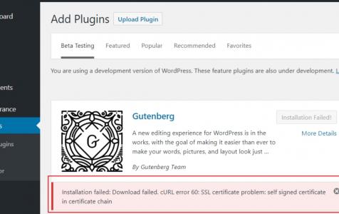 Sửa lỗi cURL error 60: SSL certificate problem trong WordPress